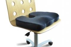 WFH Cushion